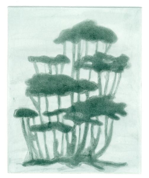 aquatint_tree