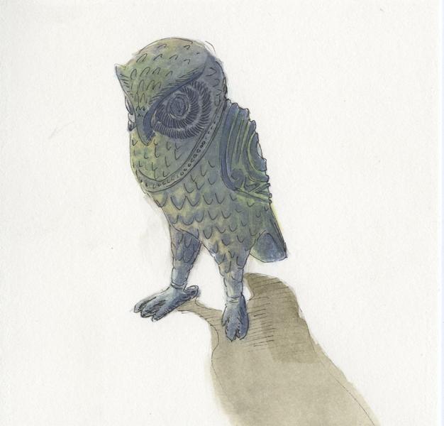 owl_study